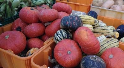 Photo of Farmers Market Copley Square Farmer's Market at 139 St. James Ave, Boston, MA 02116, United States