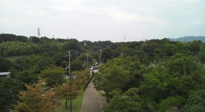 Photo of Park 寝屋川公園 at 寝屋川公園1707, 寝屋川市 572-0854, Japan