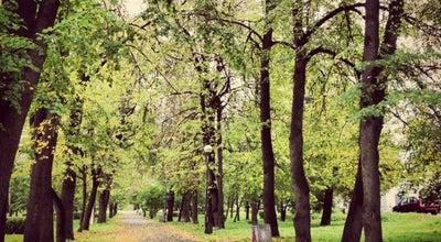 Photo of Park Левашовский бульвар at Ул. Еремеева, Петрозаводск, Russia