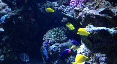 Photo of Botanical Garden Aquarium of The Pacific at 100 Aquarium Way, Long Beach, CA 90802, United States