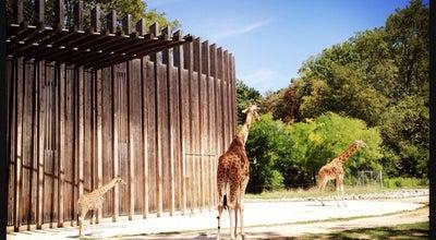 Photo of Zoo Jardin Zoologique de la Tête d'Or at Parc De La Tête D'or, Lyon 69006, France