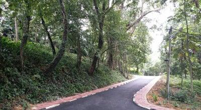 Photo of Trail Bukit D.O. at Malaysia