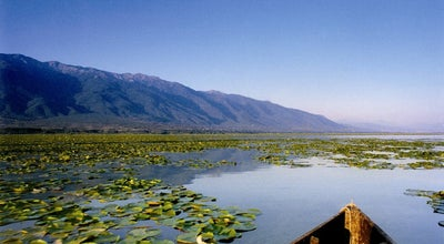 Photo of Lake Kerkini Lake at Greece