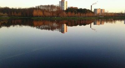 Photo of Lake Новобелицкое озеро at Ул. Ильича, Гомель, Belarus