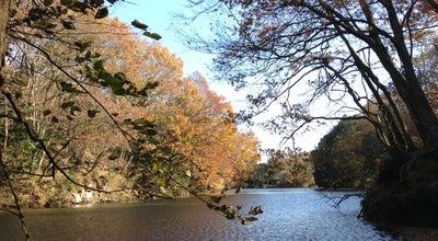 Photo of Lake 震生湖 at 今泉, 秦野市, Japan
