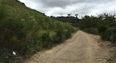 Photo of Trail Rose Canyon Trails at San Diego, CA 92122, United States