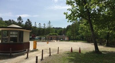 Photo of Historic Site 광릉 (光陵, Gwangneung) at 진접읍 광릉수목원로 354, 남양주시 472-864, South Korea