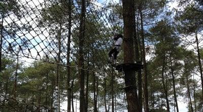 Photo of Playground Bandung Treetop Adventure Park at Cikole, Bandung Barat, Indonesia
