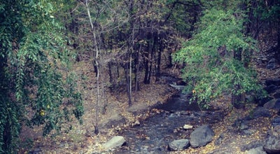 Photo of Trail Battle Creek Canyon at 1999 E Battle Creek Dr, Pleasant Grove, UT 84062, United States