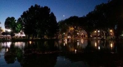 Photo of Lake Laguna Esmeralda at Colo Colo, Los Ángeles, Chile