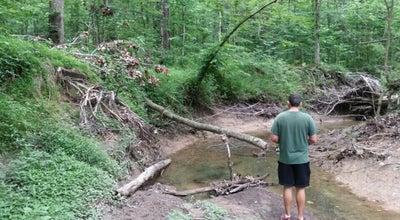 Photo of Trail Nesbitt Park at Yale Rd, Bartlett, TN 38134, United States