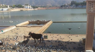 Photo of Lake Pushkar Lake at Ajmer District, Pushkar 305022, India