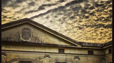 Photo of Park Villa Floridiana at Via Domenico Cimarosa, 77, Napoli 80127, Italy