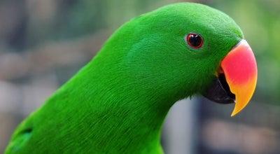 Photo of Park KL Bird Park at Jalan Cenderawasih, Taman Dato Onn Jaffar, 80350 Johor Bahru, Johor, Johor Bahru 80350, Malaysia