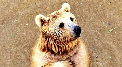 Photo of Zoo Bursa Hayvanat Bahçesi at Avrupa Konseyi Blv., Osmangazi, Turkey