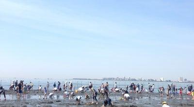 Photo of Park ふなばし三番瀬海浜公園 at 潮見町40, 船橋市 273-0016, Japan