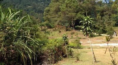 Photo of Trail Kawah kamojang at Kampung Kamojang, Samarang, Indonesia