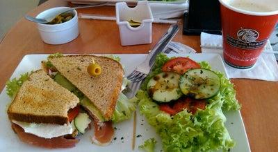 Photo of Coffee Shop Finca Santa VeraCruz at Sierra De La Canela 123, Local 3, Aguascalientes 20127, Mexico