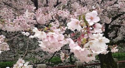 Photo of Park 大分城址公園 at 荷揚町4, 大分市 870-0046, Japan