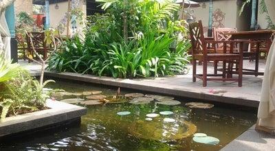 Photo of Indian Restaurant Villa Maya at India