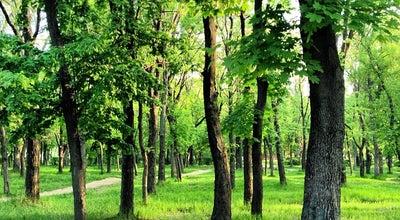 Photo of Park Студенческий парк ДГТУ at Пл. Гагарина, 1, Ростов-на-Дону 344012, Russia