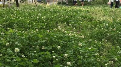 Photo of Park 吉祥寺の杜 宮本小路公園 at 吉祥寺東町1-17, 武蔵野市 180-0002, Japan