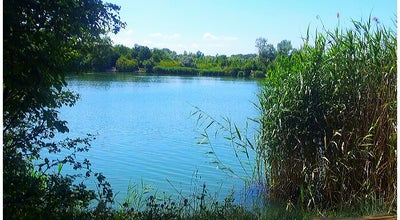 Photo of Lake Wienerbergteich at Triester Str., Vienna, Austria