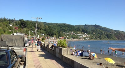 Photo of Beach Playa Los Molinos at Costanera Los Molinos, Valdivia, Chile