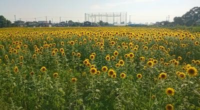 Photo of Park ひょうたん島公園 at 兵庫町渕4413, 佐賀市 849-0913, Japan