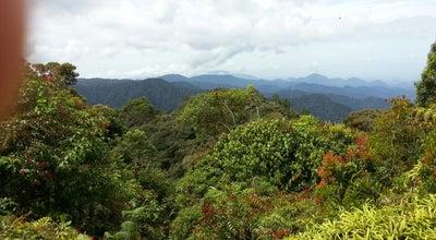 Photo of Trail Gunung Irau at Brinchang, Tanah Rata 39000, Malaysia