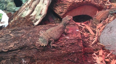 Photo of Pet Store Fauna at 265 W 87th St, New York, NY 10024, United States