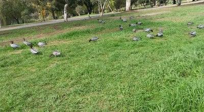 Photo of Park Bonython Park at Port Road, Adelaide, SA, Australia
