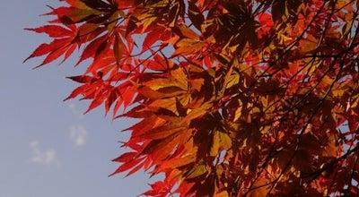 Photo of Park 多摩丘陵自然公園 at 堀之内, 八王子市, Japan