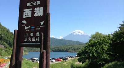 Photo of Lake 西湖 (Lake Sai-ko) at 西湖, Fujikawaguchiko-machi 401-0332, Japan