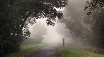 Photo of Trail Lafayette-Moraga Regional Trail at Pleasant Hill Road At Olympic Boulevard, Lafayette, CA 94549, United States