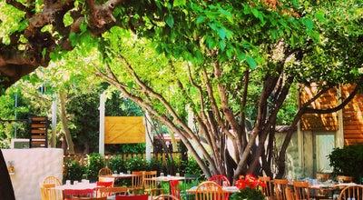 Photo of Greek Restaurant Stoffa at Βασιλίσσης Αμαλίας 20, Κηφισιά 145 61, Greece