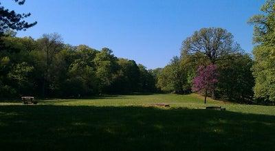 Photo of Park Kamenički park at Dvor, Sremska Kamenica, Serbia