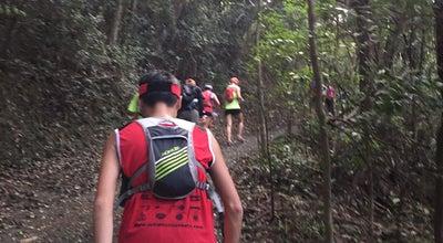 Photo of Trail Hong Kong Trail (Section 1) 港島徑(第一段) at The Peak, Hong Kong