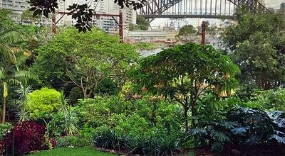 Photo of Garden Wendy Whiteley's Secret Garden at 1 Walker St, Lavender Bay, NS, Australia