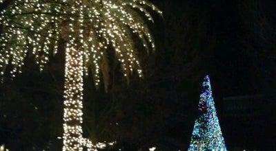 Photo of Park Marion Square at Calhoun St, Charleston, SC 29403, United States