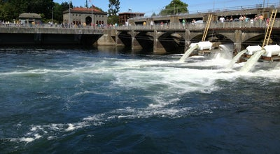 Photo of Other Great Outdoors Lake Washington Ship Canal Fish Ladder at Seattle, WA 98199, United States