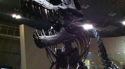 Photo of Science Museum 国立科学博物館 (National Museum of Nature and Science) at 上野公園7-20, 台東区 110-8718, Japan
