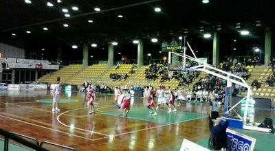 Photo of Basketball Court Palazzetto Dello Sport at Via Delle Tagliate, Lucca 55100, Italy