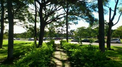 Photo of Park Parque da Cidade Sarah Kubitschek at Pq. Recreativo Sarah Kubitschek, Brasília 70610-300, Brazil