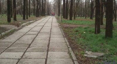 Photo of Park Парк at Джантошева, Бишкек | Bishkek 720005, Kyrgyzstan