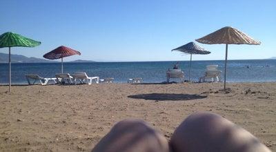 Photo of Beach Dikili Sahil at Turkey