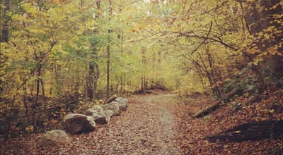 Photo of Trail Trolley Trail No. 9 at Ellicott City, MD 21043, United States