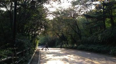 Photo of Trail 남산산책로 at 용산구 남산공원길, Seoul 140-022, South Korea