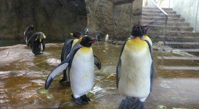 Photo of Zoo Zoologischer Garten Wuppertal at Hubertusallee 30, Wuppertal 42117, Germany