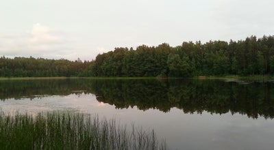 Photo of Lake Seleku ezers at Latvia